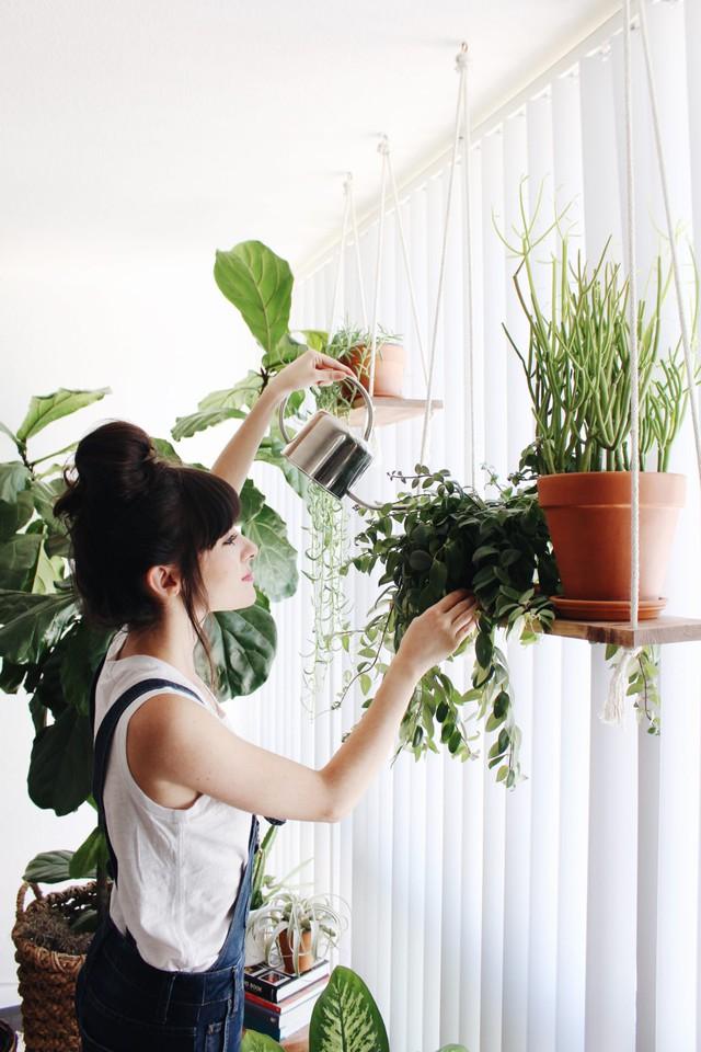 Khi một trong hai người làm bữa sáng, người còn lại sẽ chăm sóc cây cối khắp mọi ngõ ngách trong nhà.
