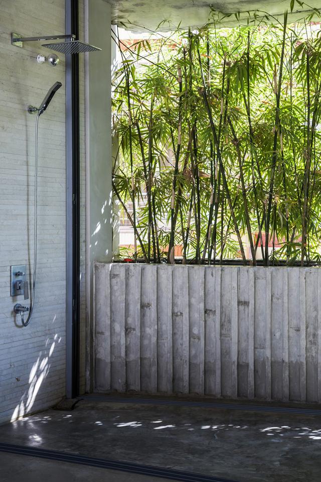 Không chỉ có một tấm thảm tre xanh ở mặt tiền, phía sau ngôi nhà cạnh cầu thang còn được bao bọc bởi một lớp cây dây leo mang đến không gian xanh xuyên suốt cho ngôi nhà.