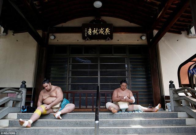 Võ sĩ sumo người Brazil Kaisei và võ sĩ sumo người Mông Cổ Kyokushuho.