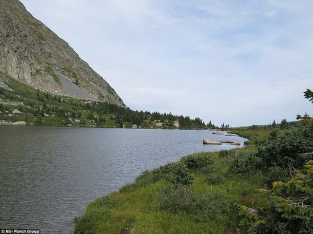 Hơn 160 km suối và lạch là môi trường sống của nhiều loài cá hồi. Ảnh: Mirr Ranch Group