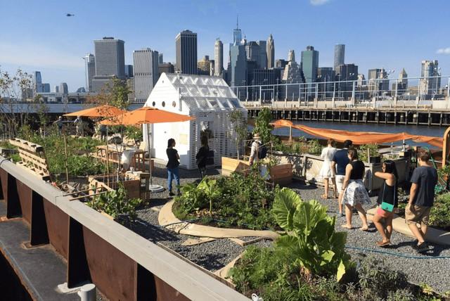 Một công viên nổi khác đã được xây dựng tại Brooklyn có tên là Swale. Đây là một xà lan có nhiều rau tươi và hoa quả mà du khách có thể ăn miễn phí.