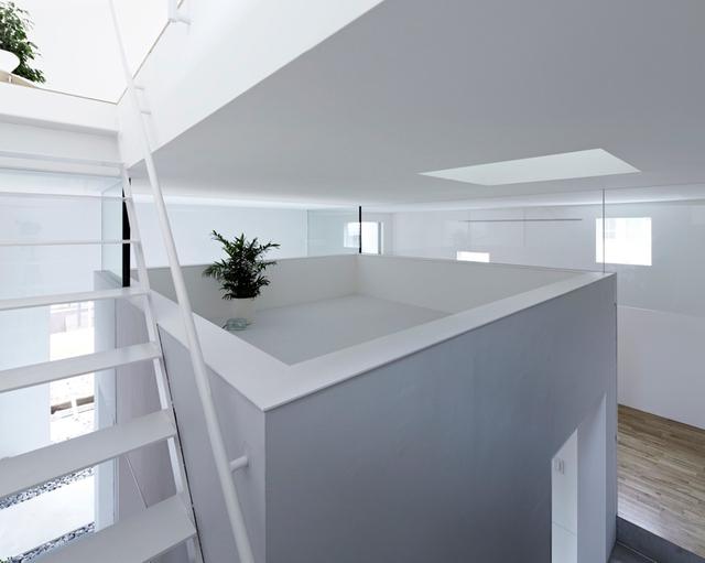 Tầng lửng được đặt giữa nhà có thể làm góc trồng cây xanh, nơi trang trí lý tưởng cho ngôi nhà.