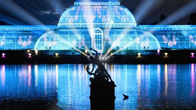 Một bữa tiệc ánh sáng đầy hứa hẹn sẽ được tổ chức mừng Giáng sinh năm nay tại Kew Gardens, New York.