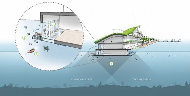Thành phố sẽ tự nuôi trồng thực phẩm theo mô hình thuỷ canh - trồng cây, nuôi cá dưới nước.