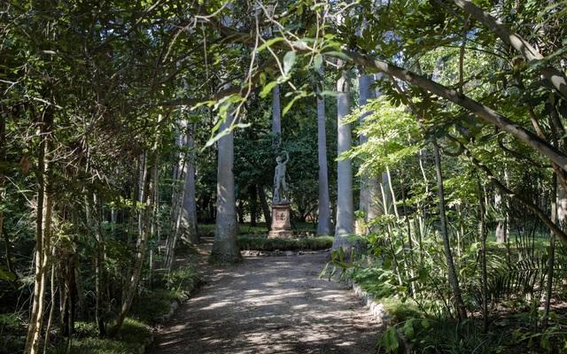 Khu vườn bên trong dinh thự gợi nét đẹp cổ điển.