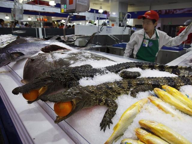 Thậm chí, cá sấu nguyên con cũng được tìm thấy trong siêu thị.