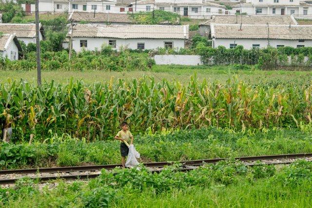 Đoàn tàu lăn bánh, Chu tiếp tục được nhìn thấy cuộc sống thường ngày của người dân Triều Tiên ở hai bên đường ray.