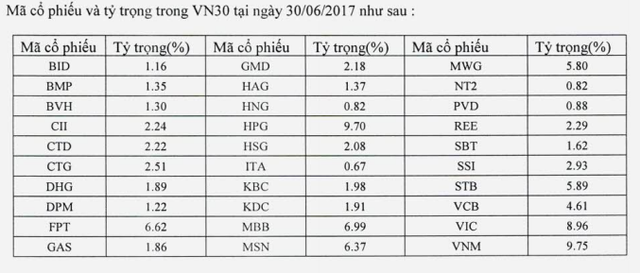 Danh mục phân bổ của Quỹ ETF VFMVN30