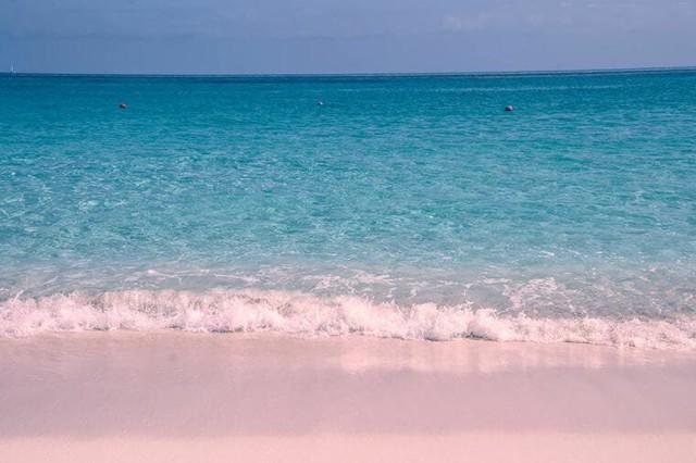 Ngắm nhìn vẻ đẹp thơ mộng của những bãi biển cát hồng đẹp nhất thế giới - Ảnh 1.