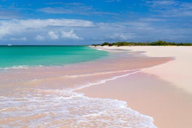 Ngắm nhìn vẻ đẹp thơ mộng của những bãi biển cát hồng đẹp nhất thế giới - Ảnh 3.