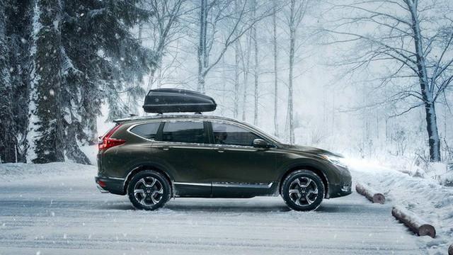 Honda, Toyota ngừng xuất xe sang Việt Nam vì Nghị định 116: Đừng lo, người dùng được lợi đấy! - Ảnh 1.
