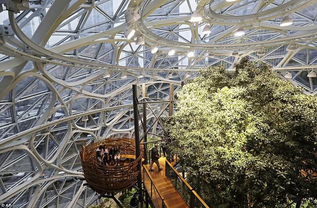 Bên trong văn phòng hình cầu pha lê 4 tỷ USD của Amazon - Ảnh 3.