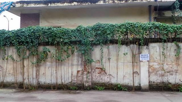 Khu đô thị giữa Thủ đô ôm đất 14 năm không triển khai   - Ảnh 11.