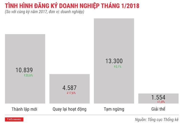 Kinh tế Việt Nam tháng 1/2018 qua những con số - Ảnh 12.