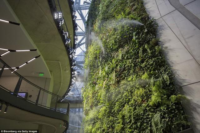 Bên trong văn phòng hình cầu pha lê 4 tỷ USD của Amazon - Ảnh 13.