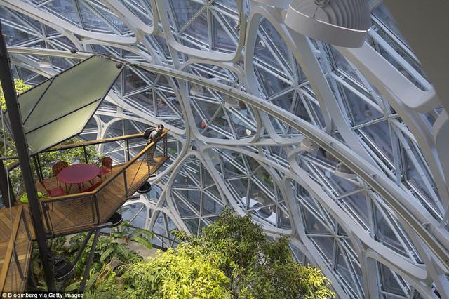 Bên trong văn phòng hình cầu pha lê 4 tỷ USD của Amazon - Ảnh 17.