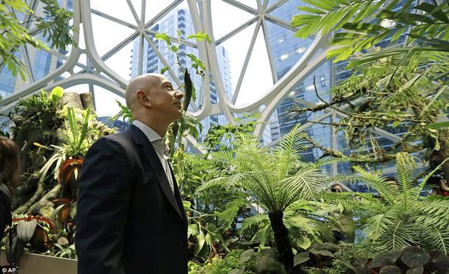 Bên trong văn phòng hình cầu pha lê 4 tỷ USD của Amazon - Ảnh 5.