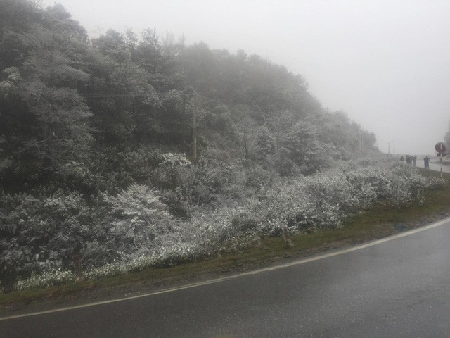 Sa Pa bất ngờ xuất hiện tuyết rơi dày đặc trong sáng nay - Ảnh 4.