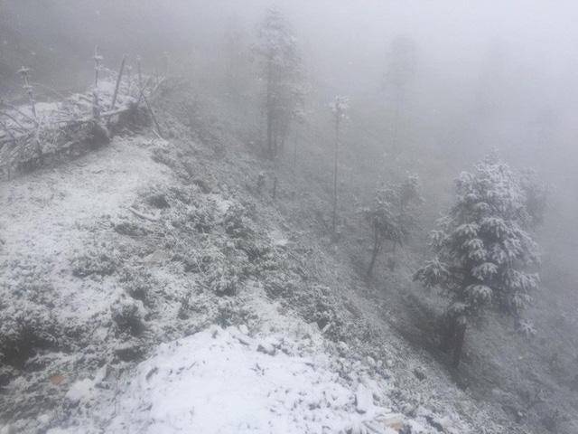 Sa Pa bất ngờ xuất hiện tuyết rơi dày đặc trong sáng nay - Ảnh 5.