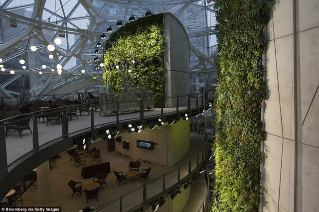 Bên trong văn phòng hình cầu pha lê 4 tỷ USD của Amazon - Ảnh 8.