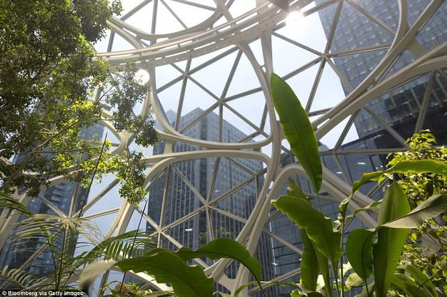 Bên trong văn phòng hình cầu pha lê 4 tỷ USD của Amazon - Ảnh 11.