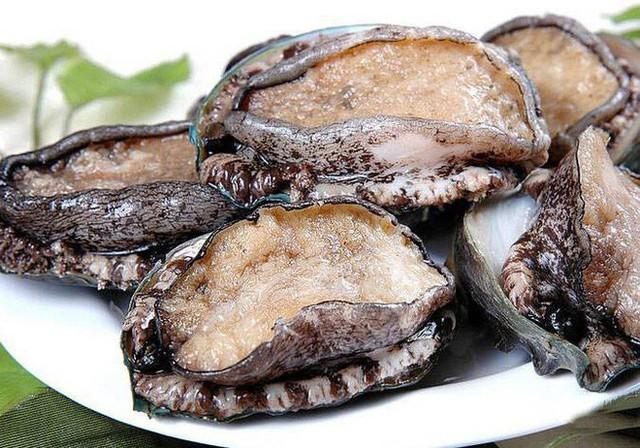 Hải sản tuy ngon nhưng những phần này không nên ăn: Bạn nên biết trước khi ăn - Ảnh 5.