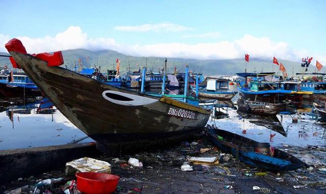 Cảng cá lớn nhất miền Trung nước đen ngòm, bốc mùi hôi thối - Ảnh 9.
