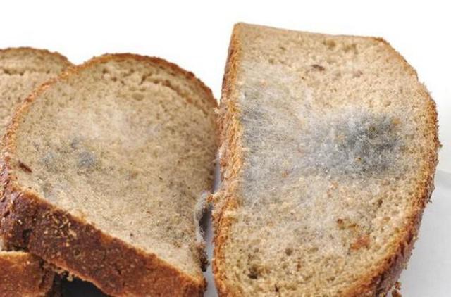 Người phụ nữ bị ung thư dạ dày giai đoạn cuối chỉ vì thói quen nấu ăn mà rất nhiều người cũng thường làm - Ảnh 4.