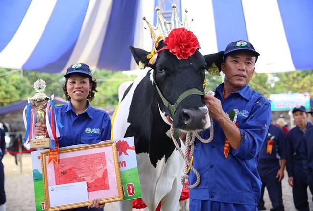 Hội thi Hoa hậu Bò sữa Mộc Châu: Niềm vui đặc biệt của một tỷ phú không đoạt giải - Ảnh 3.