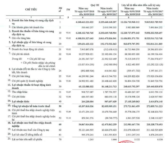 SMC: Quý 3 lãi 53 tỷ đồng giảm 13% so với cùng kỳ - Ảnh 1.
