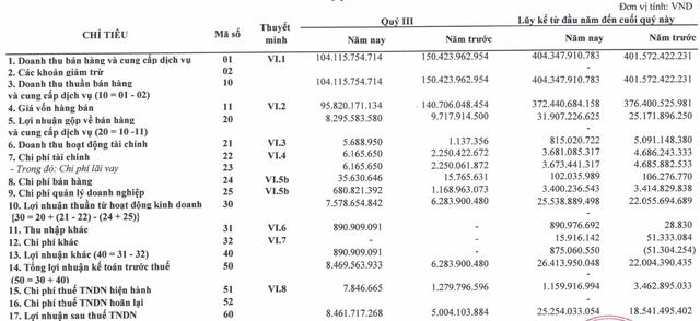 Đầu tư sản xuất và thương mại HCD báo lãi tăng trưởng 36% sau 9 tháng - Ảnh 1.