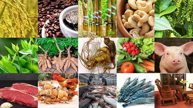 15 sản phẩm nông nghiệp được đề xuất là sản phẩm chủ lực quốc gia - Ảnh 1.