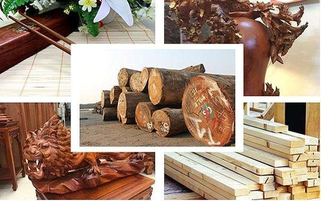 15 sản phẩm nông nghiệp được đề xuất là sản phẩm chủ lực quốc gia - Ảnh 16.