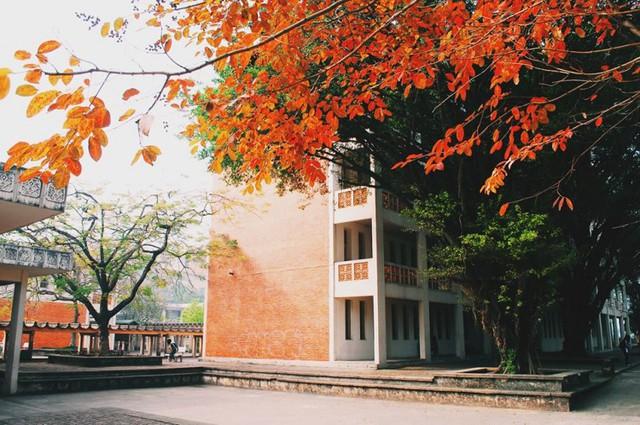 Cận cảnh vẻ đẹp lãng mạn của ĐH Quốc gia Hà Nội - Ngôi trường chiếm vị trí cao nhất ĐH Việt trong 2 BXH uy tín thế giới gần đây - Ảnh 11.