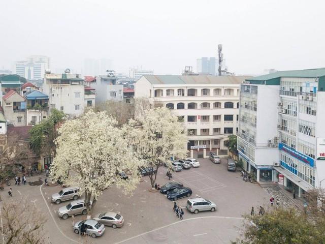Cận cảnh vẻ đẹp lãng mạn của ĐH Quốc gia Hà Nội - Ngôi trường chiếm vị trí cao nhất ĐH Việt trong 2 BXH uy tín thế giới gần đây - Ảnh 3.