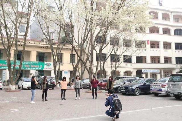 Cận cảnh vẻ đẹp lãng mạn của ĐH Quốc gia Hà Nội - Ngôi trường chiếm vị trí cao nhất ĐH Việt trong 2 BXH uy tín thế giới gần đây - Ảnh 4.