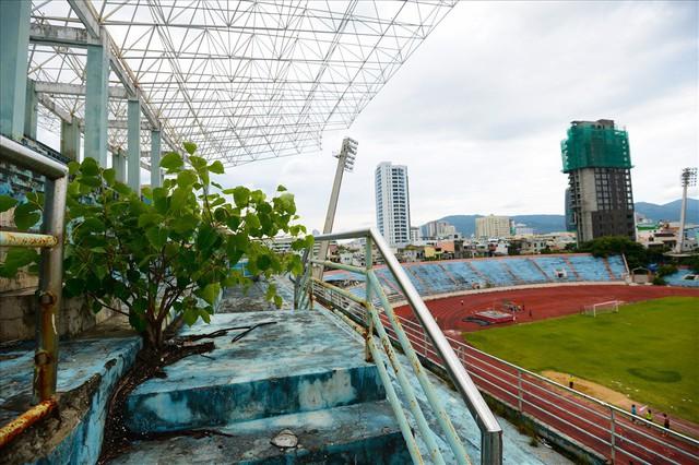 Sân vận động Chi Lăng hoang tàn sau gần 8 năm bán cho doanh nghiệp - Ảnh 2.
