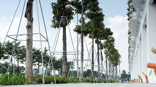 Mãn nhãn với con đường có 10 làn chuẩn bị thông xe ở Hà Nội   - Ảnh 12.