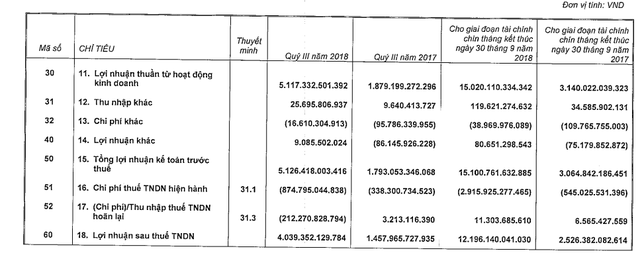 VinHomes đạt 15.100 tỷ đồng LNTT trong 9 tháng, gấp 5 lần cùng kỳ - Ảnh 1.