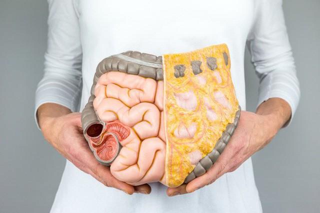 Đây mới là loại chất béo trong cơ thể cần loại bỏ đầu tiên vì nó vừa cứng đầu vừa khiến đe dọa sức khỏe của bạn - Ảnh 1.