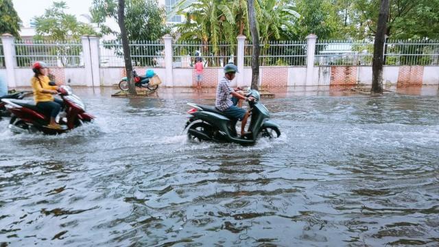 """Cà Mau: Đường biến thành """"sông"""" sau cơn mưa như trút nước - Ảnh 2."""
