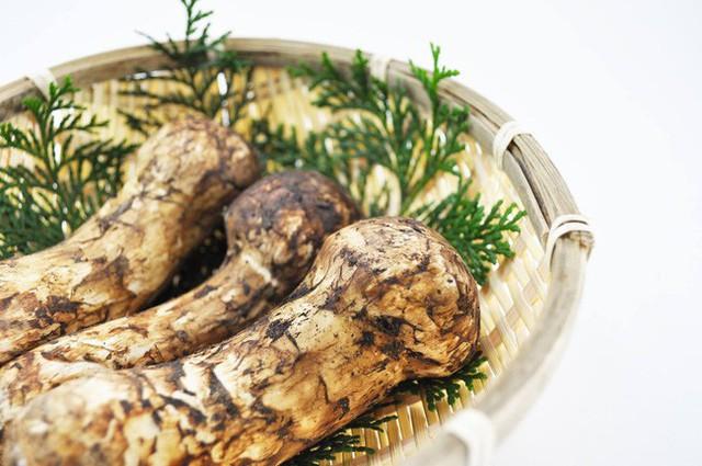 Khám phá matsutake - loại nấm đắt nhất thế giới mang trọn vẹn hương vị mùa thu Nhật Bản, 50 triệu/kg mà vẫn cháy hàng - Ảnh 12.