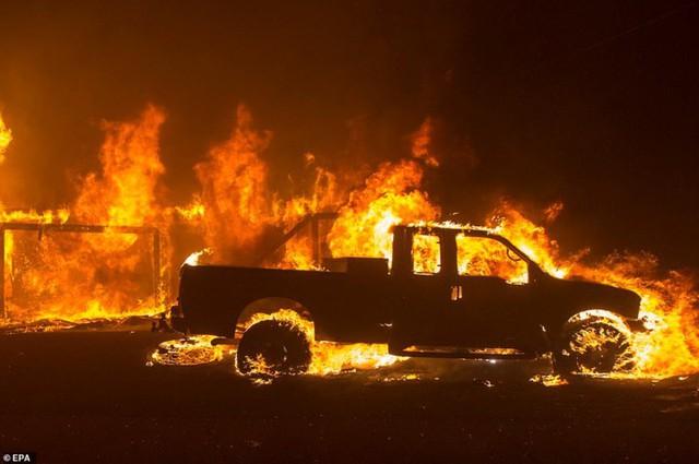 """Hãi hùng cảnh cháy rừng giống """"bom hạt nhân phát nổ"""" ở California, Mỹ - Ảnh 15."""