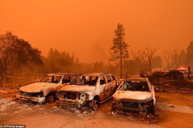 """Hãi hùng cảnh cháy rừng giống """"bom hạt nhân phát nổ"""" ở California, Mỹ - Ảnh 17."""