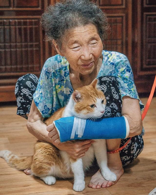 Bộ ảnh đầy cảm xúc của cụ bà Hàn Quốc: Tuổi già chẳng cần gì, chỉ cần một chú mèo béo bầu bạn thôi - Ảnh 11.