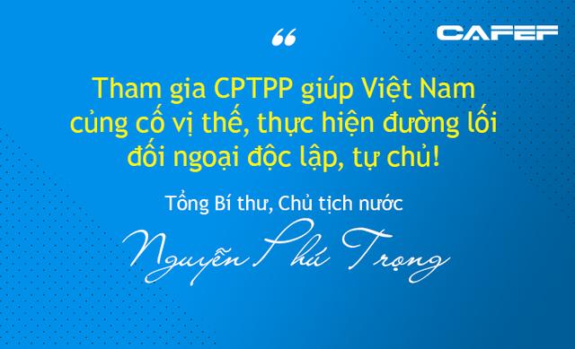 Mừng - lo Hiệp định CPTPP dưới góc nhìn từ Nhà nước, Chính phủ đến doanh nghiệp - Ảnh 1.