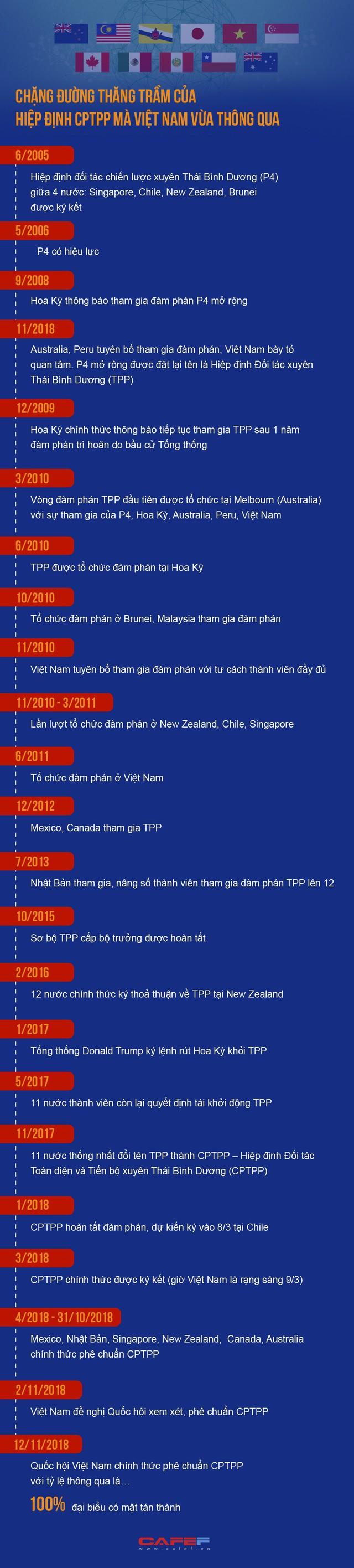 Chặng đường thăng trầm của Hiệp định CPTPP mà Việt Nam vừa thông qua - Ảnh 1.