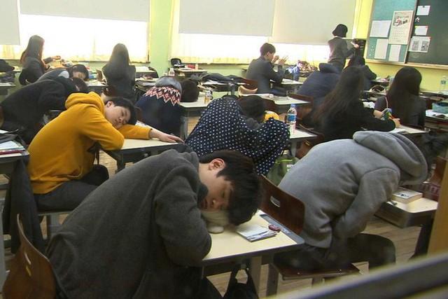 Tiến sĩ Oxford: Học sinh ngủ trong lớp đâu phải vì lười, giáo dục nên coi giấc ngủ như một phần trọng tâm - Ảnh 1.