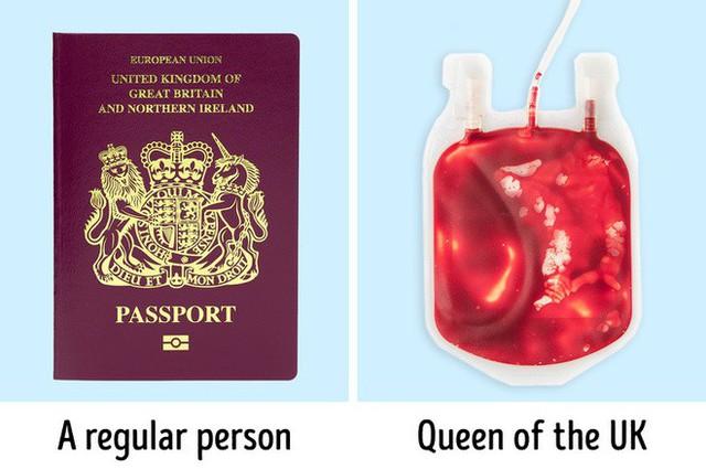 9 bí mật bất ngờ về Nữ hoàng Anh: Luôn mang theo túi máu và 1 cái móc nhỏ khi ra ngoài - Ảnh 1.