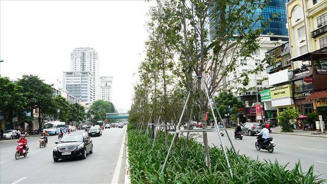 Bất chấp kiểu thời tiết khó chiều ở Hà Nội, hàng phong lá đỏ đổi màu đẹp lãng mạn - Ảnh 9.